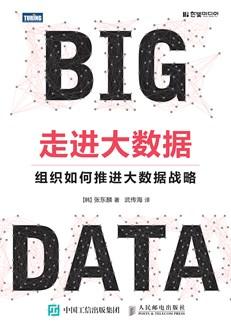 走进大数据:组织如何推进大数据战略
