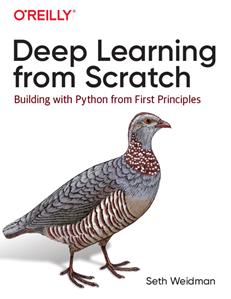 Python深度学习入门:从零构建CNN和RNN